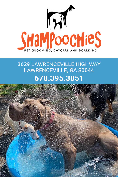 Shampoochies Gwinnett Ad